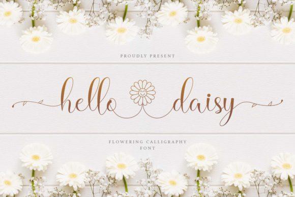hello-daisy