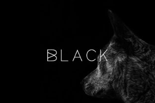 black-font