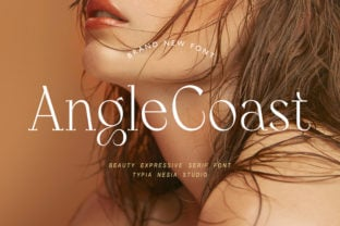 angle-coast-font
