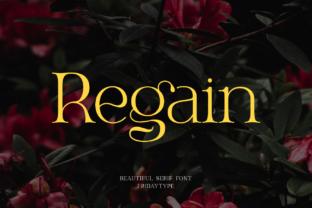 regain-font