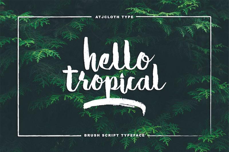 hello-tropical