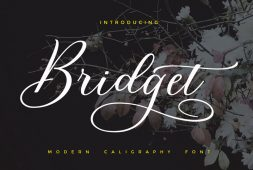 bridget-script