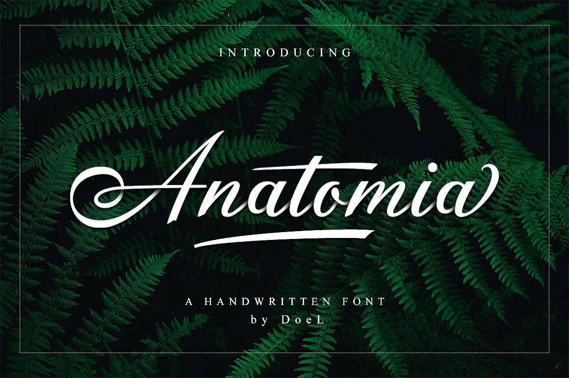 anatomia-valentine-love
